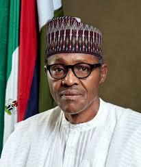 A Peep Into President Buhari's Visa Free Policy. By Ebuka Onyekwelu
